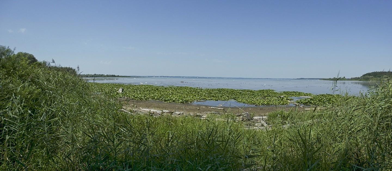 Panoramablick über den schönen Chiemsee aus Hirschauer Bucht