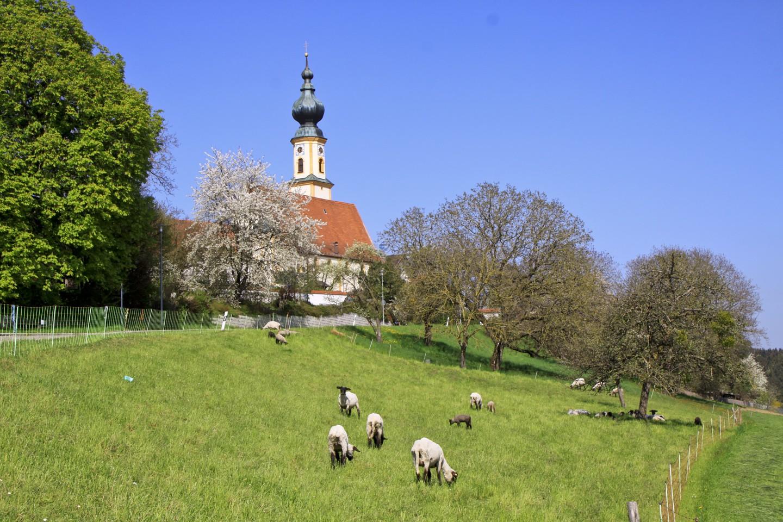Blick zur Kirche von Höslwang